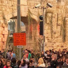 Homily from Pilgrimage to Israel (Mar. 25, 2018): Jerusalem – PALM SUNDAY