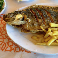Homily from Apr. 15, 2018: Jesus ate some fish