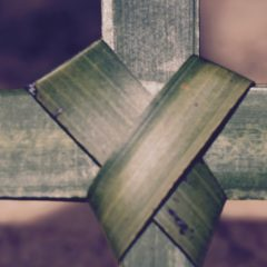 Homily from Apr. 14, 2019: Palm Sunday