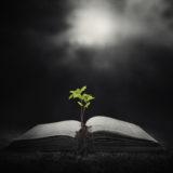 Homily from Jan. 27, 2019: God's Living Word