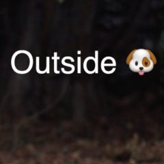 #TenSecondTuesday: Outside 🐶